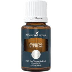 Essential Oil Products | Essential Oil Singles | Cypress Essential Oil