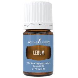 Essential Oil Products | Essential Oil Singles | Ledum Essential Oil