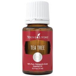 Essential Oil Products | Essential Oil Singles | Tea Tree (Melaleuca Alternifolia)
